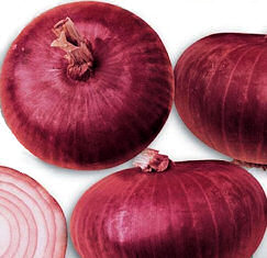 Onion Di Genova 200 seeds
