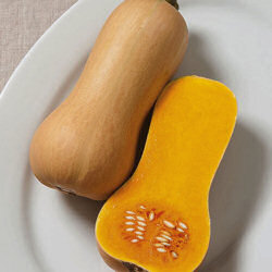 Squash Winter Butterscotch 10 seeds