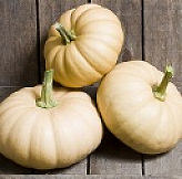 Squash Winter Autumn Crown 10 seeds