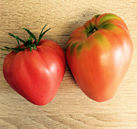 Tomato Seeds Cuor di Bue 40 seeds