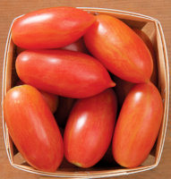 Tomato Seeds Pink Tiger 10 seeds