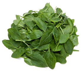 Spinach Sputnik 1000 seeds