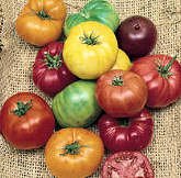 Tomato Seeds Heirloom Mix 15 seeds