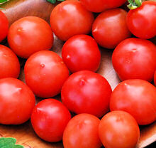 Tomato Seeds Riesentraube 20 seeds
